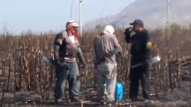 Según estas imágenes los trabajadores beben agua de un mismo vaso