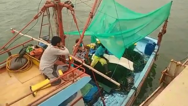 Los sobrevivientes narraron que la embarcación en la que desarrollaban labores de pesca fue embestida por un barco mercante.