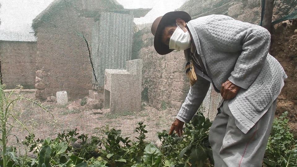 Don Ranulfo se trazó la meta de construir su propio biohuerto en casa.