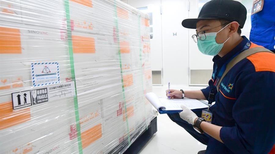 El suministro de la vacuna debe recibir todavía la aprobación de la agencia gubernamental de control sanitario.