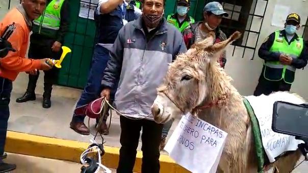 Los manifestantes realizaron una protesta con un burro al que le pusieron el nombre del alcalde de Acomayo.