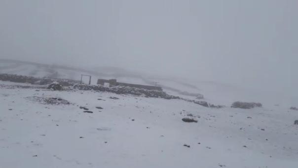 Cubiertas con una capa de nieve quedaron pastizales, corrales y viviendas en las zonas altas de la región Arequipa.