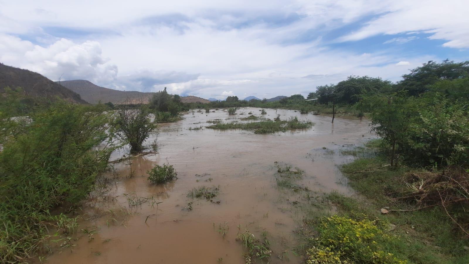 Cultivos de arroz terminaron cubiertos con el agua de la lluvia que cayó sobre el distrito de Oyotún.