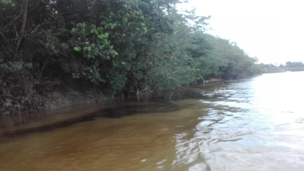 Derrame de petróleo afecta al menos a 16 comunidades aguas abajo del río Corrientes, en Loreto.
