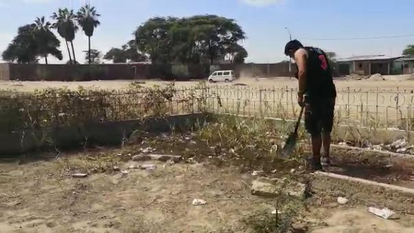 Los jóvenes vienen realizando intervenciones de reforestación en Piura, Castilla y Veintiséis de Octubre.