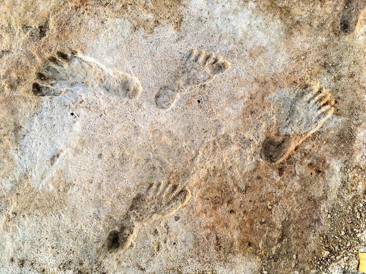 Huellas humanas de hace 23.000 años